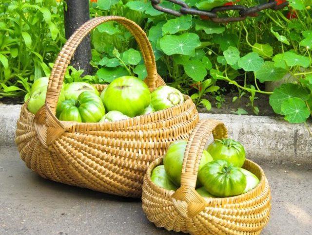 Терапия помидорами может сопровождаться во время процедуры жжением и пощипыванием
