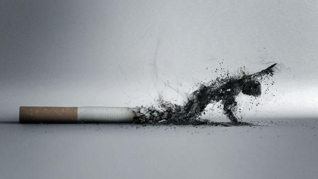 Курение сигарет, в не зависимости от стажа, приводит к появлению аритмии