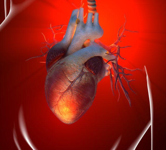 При наличии рубца сердце начинает испытывать вполне объяснительную перегрузку, поскольку оставшаяся площадь здоровой соединительной ткани не прекращает свою работу в прежнем объеме