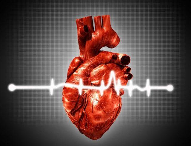 Варфарин является антикоагулянтом, что означает, что препарат останавливает свертывание крови