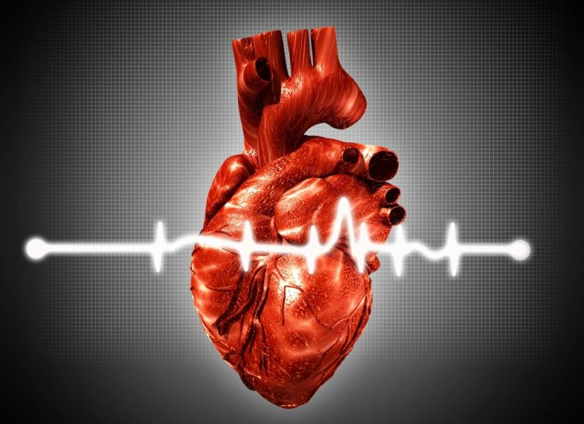 Аритмия постоянная форма ⋆ Лечение Сердца