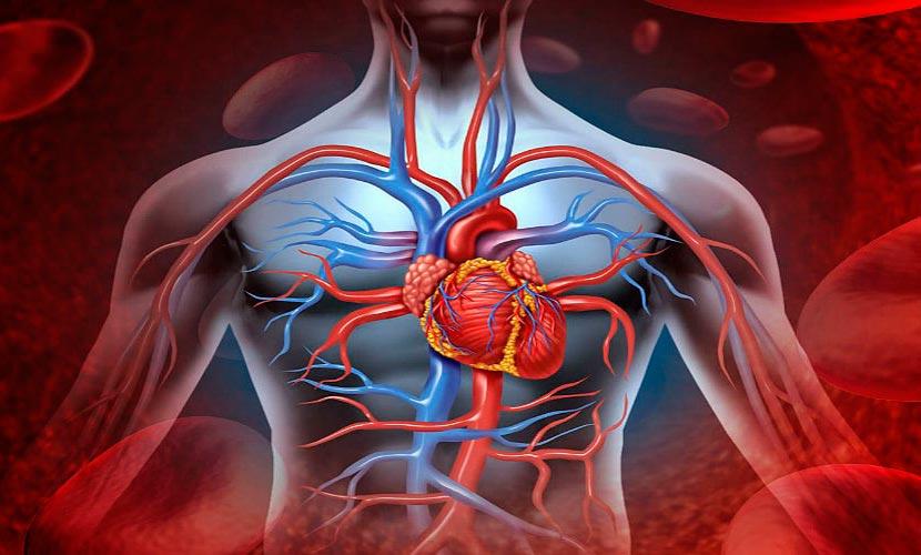 Аневризма аорты после инфаркта
