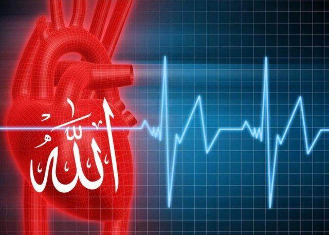 Выполняется перкуссия грудной клетки в районе сердца