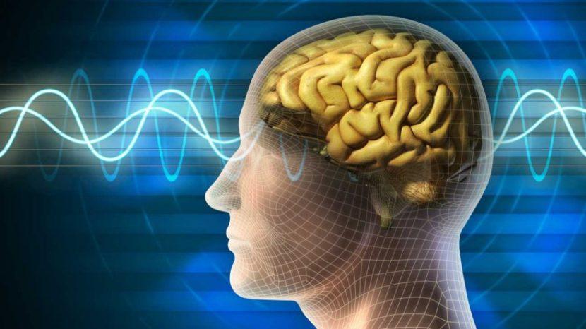 Церебральная ангиодистония: причины и симптомы, диагностика, лечение и профилактика
