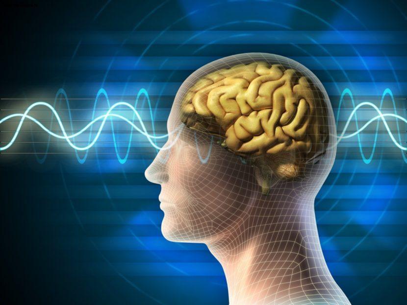 Инсульт и инфаркт головного мозга ⋆ Лечение Сердца