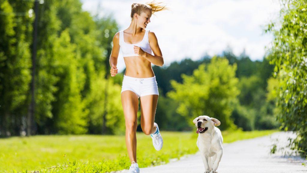 «Кошачий коготь» – эффективный БАД для укрепления здоровья